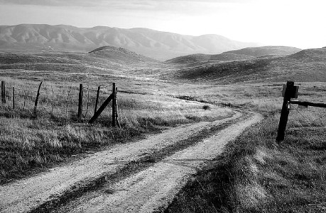 Country dirt road in grey scale